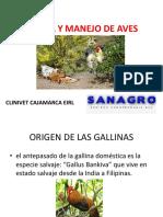 CRIANZA Y MANEJO AVES CRIOLLAS MEJORADAS.pptx