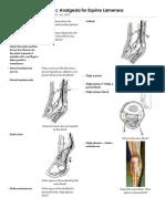 Diagnostic Analgesia for Equine