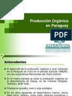 Producción Orgánica en el Paraguay.pptx