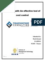 Internal Audit Cost control.pdf