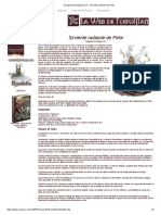 Dungeons & Dragons 3.5 __ Sirviente radiante de Pelor.pdf