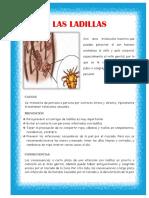 asignacion de las ENFERMEDADES ITS.docx
