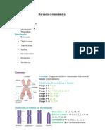 Herencia cromosómica