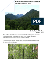 estadoconservacinbosquecinfaetal-141014113553-conversion-gate01.pdf