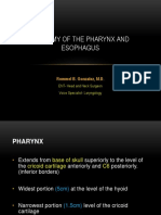 [Ent] - Lec5 Anatomy of the Pharynx & Esophagus - Gonzales