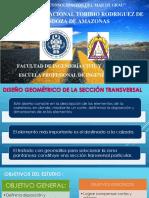 CAMINOS SECCIÓNES.pptx