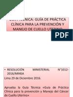 GUÍA-TÉCNICA-CÁNCER.pptx