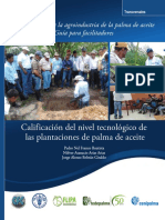 Guia CalificacionNivelTecnológicoPlantacionesPalmaAceite