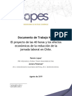 Documento de Trabajo 40 Horas OPES