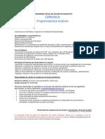 c 0167 19 Programador Analista