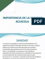 Importancia de La Sanidad Acuicola Clase 1