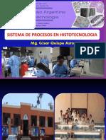 15. Diagrama de en Histotecnologia  07 10 Quispe.pdf