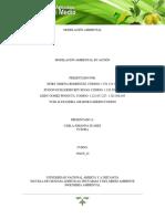FASE 4 modelacion ambiental