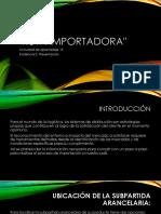 Ruta importadora 15,2.pptx