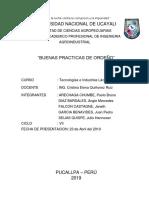 BPO LACTEOS.docx
