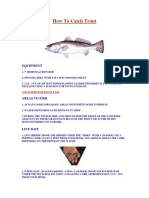 How To Catch Trout Ebook.pdf
