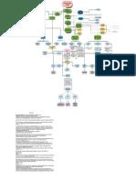 el conocimento humano.pdf