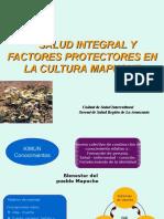 Salud Mapuche, Presentacion