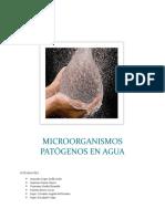 Microorganismos Patogenos en El Agua
