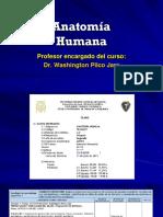 Anatomía Humana Farmacia