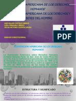Exposicion Derecho Contitucional