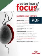 Veterinary focus 29.1