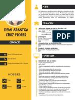 Curriculum Demi (2)
