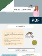 Gravidez e Zika Vírus