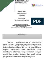 NEUROANATOMI VANIA.pptx