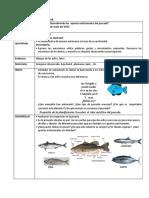 Descubriendo los  aportes nutricionales del pescado.docx