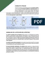 ANOMALÍAS DEL CONDUCTO VITELINO.docx