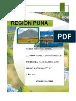 Region Puna
