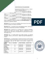 Modelo Minuta Sociedad Ltda (1)