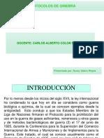 EXPOSICION PROTOCOLOS DE GINEBRA.ppt
