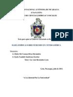 Monografia Femicidio Desarrollo