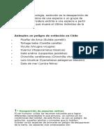 Apunte Extinción en Chile.doc