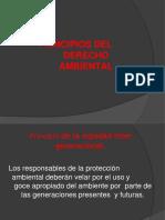 4.-PRINCIPIOS DEL DERECHO AMBIENTAL.pptx