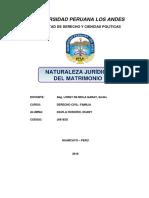 NATURALEZA JURIDICA DEL MATRIMONIO