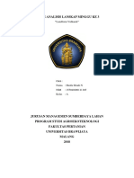 LANDFORM-VULKANIK.docx