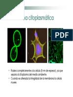 U2c.MembranaCitoplasmatica_16955.PDF