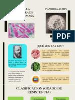 EXPOSICIÓN KPC