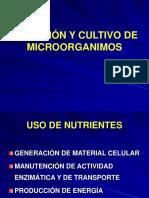 Nutrición y Microorganismos