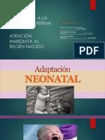SEMINARIO 1 NEONATOLOGIA.pptx