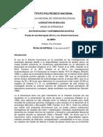 Artemia franciscana.docx