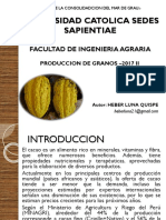 Manejo Técnico Del Cacao - Heber Luna UCSS