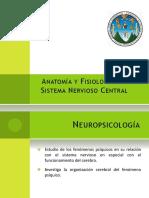Anatomía y Fisiología del Sistema Nervioso Central - Hasta el Diencéfalo.pptx