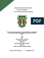 Metodologías Para Sistemas de Gestión TESIS RPBV7