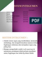 95415_Kel. 3 Integumen