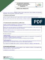 Modelo de Proyecto_Curumani