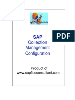 SAP_Collection_Management_Config_preview.docx